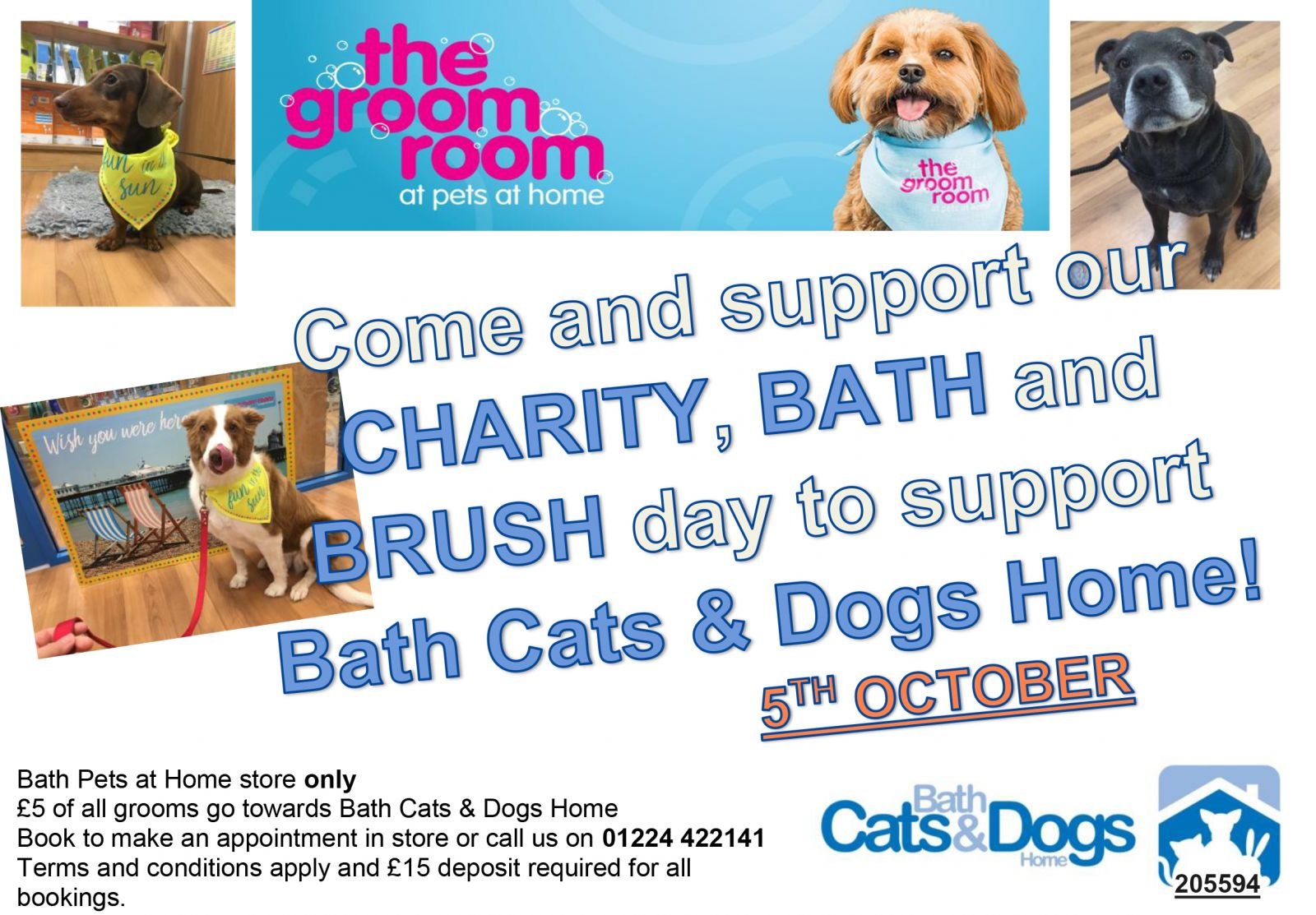 Bath Cats and Dogs Home - Events calendar